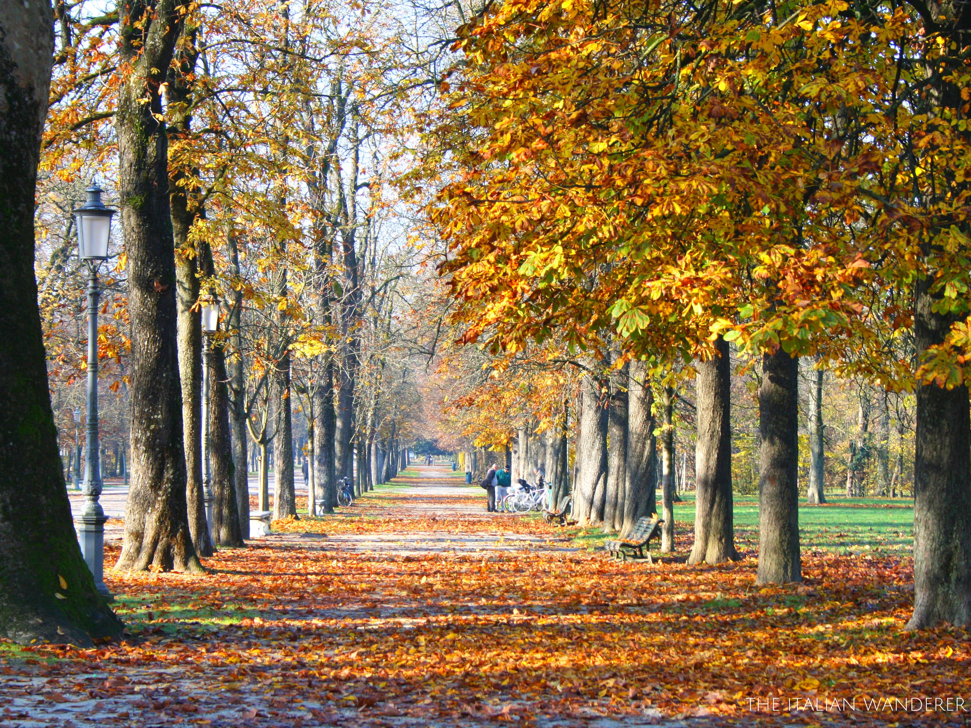 Parco Ducale of Parma