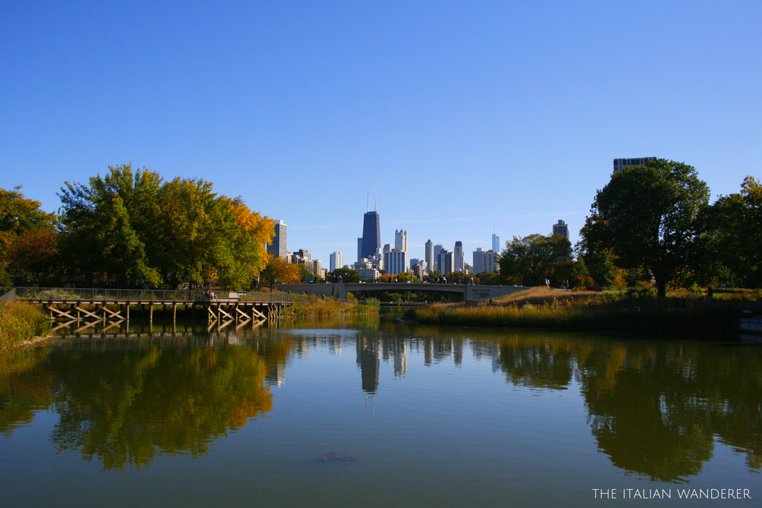 The view of Chicago from the Zoo Park