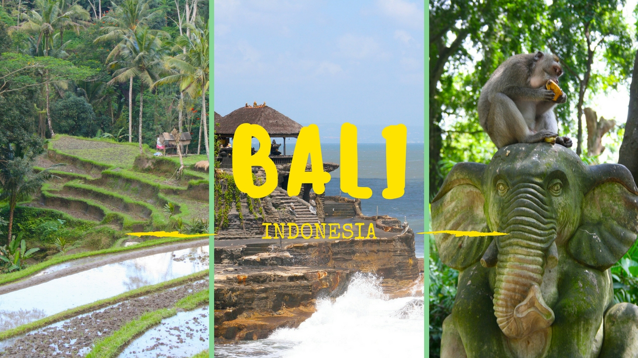 Bali, video highlights.