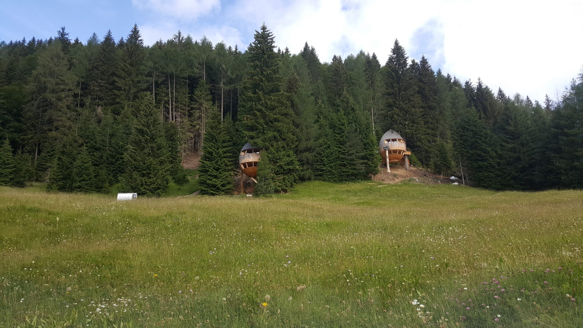 Treehouse of Malga Priu | The Italian Wanderer
