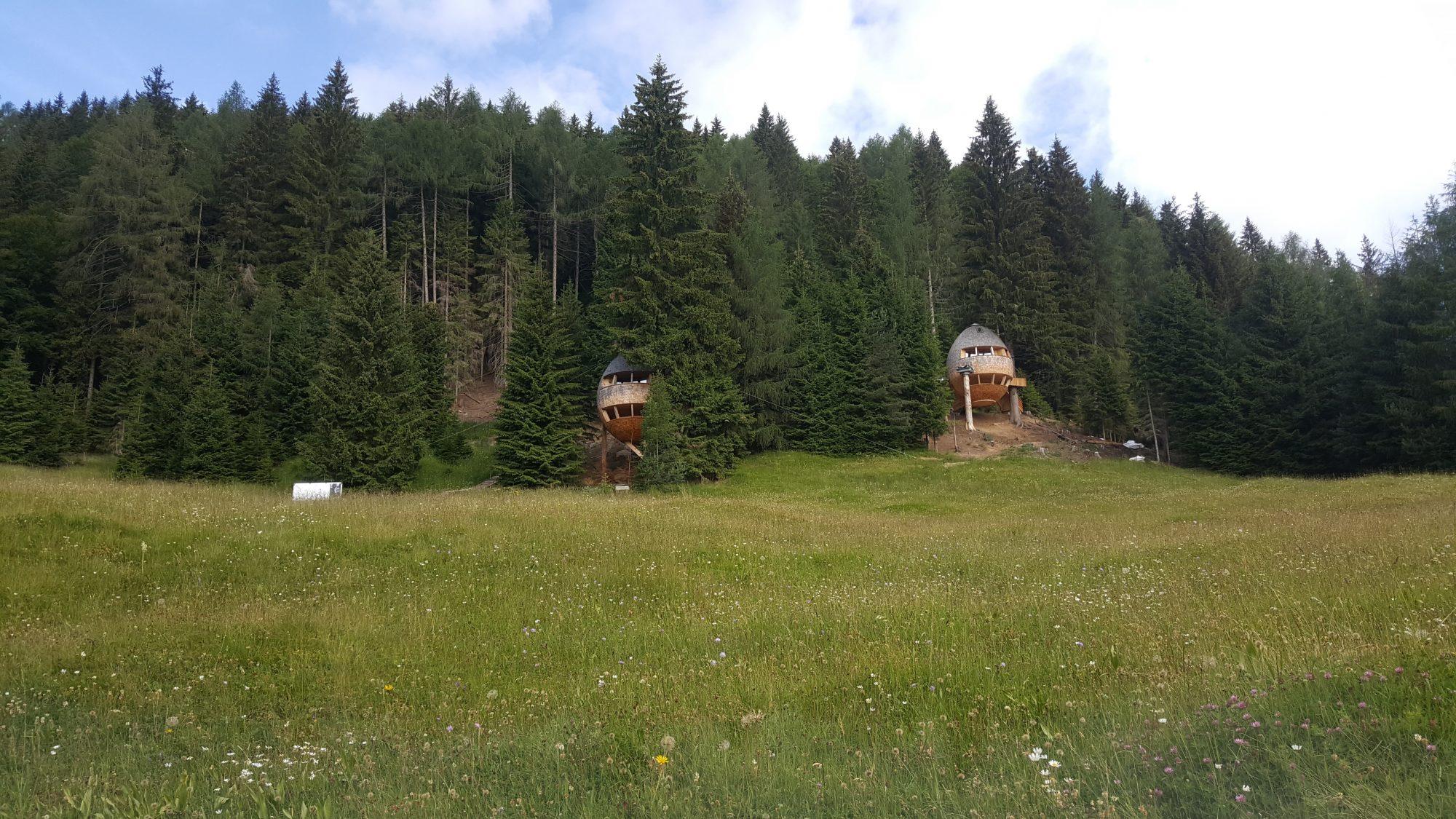 Treehouse of Malga Priu | The Italian Wanderer
